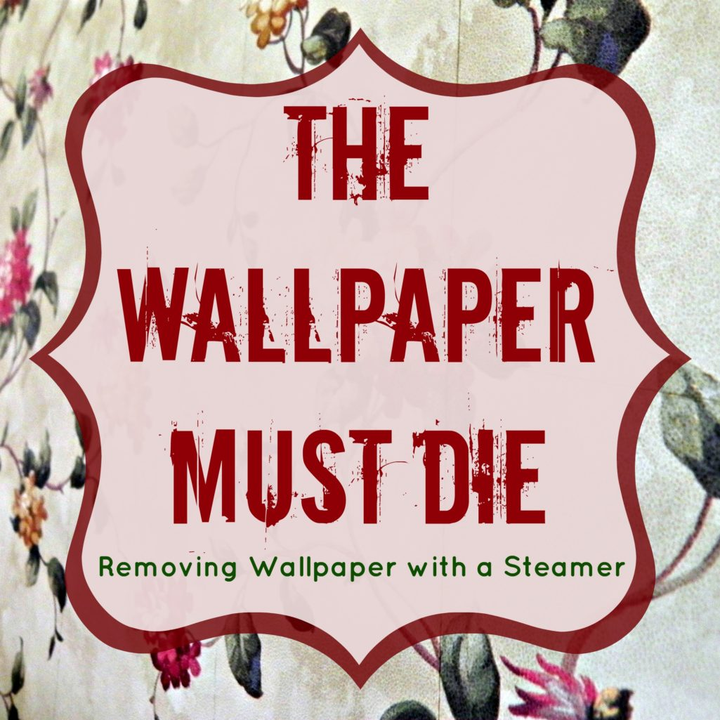 Removing Wallpaper with a Steamer Mad in Crafts