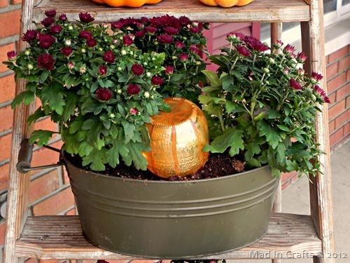 decorative pumpkin automatic mum watering system_thumb