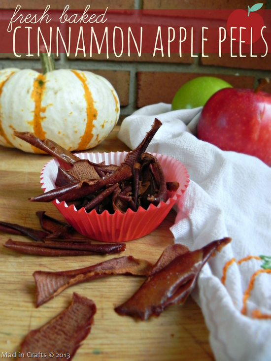 Fresh-Baked-Cinnamon-Apple-Peels_thu