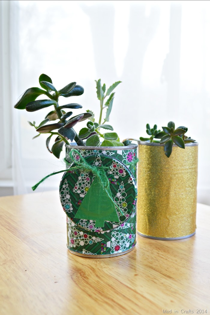 Tin Can Succulent Planter Gifts