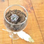 wine-glass-terrarium-favor_thumb.jpg