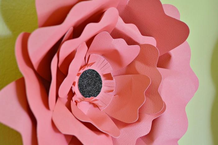 big bloom detail