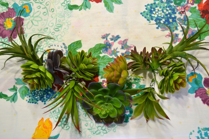 lay out faux succulents