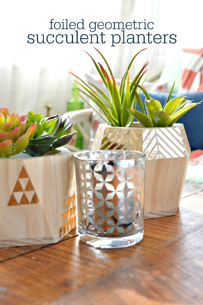 DUCK TAPE SUCCULENT PLANTER GIFT