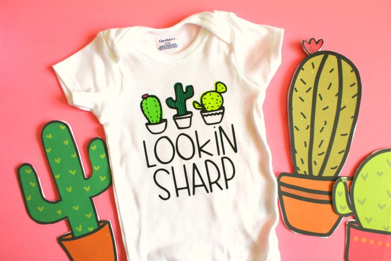 20 SHARP CACTUS CRAFTS