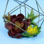 DOLLAR STORE GEOMETRIC PLANTER WITH NEW COLOR SHIFT SPRAY PAINT