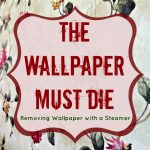 Removing Wallpaper with a Steamer