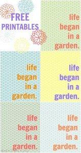 Life began in a garden - free printables