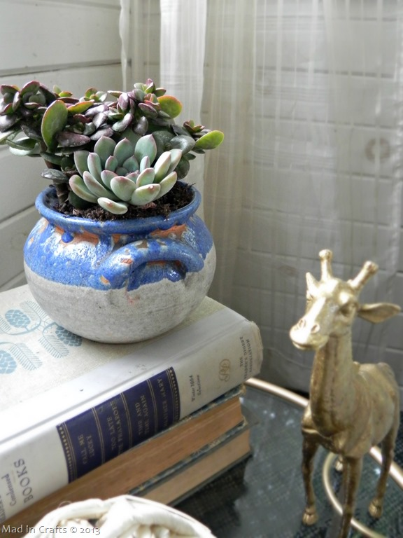 succulents-in-a-crock_thumb1
