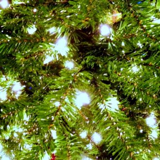 CHRISTMAS TRENDS AND INSPIRATION FROM BRONNER'S