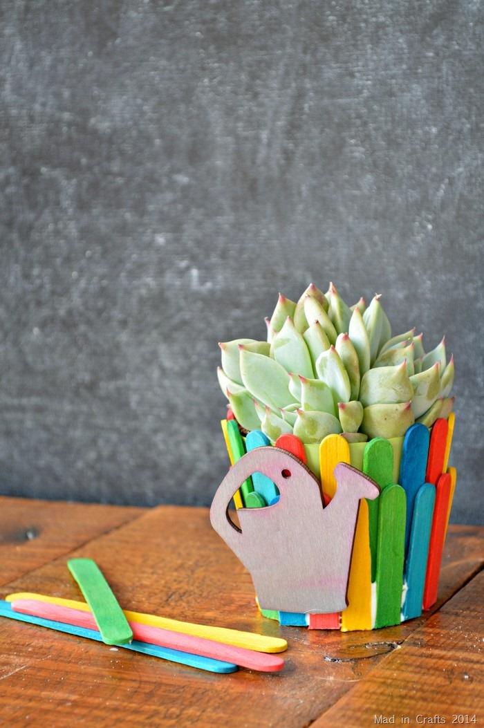 Teacher Gift Plant