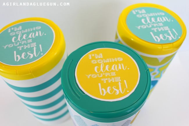 cute-clorox-printables