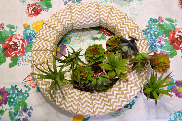 succulent wreath supplies