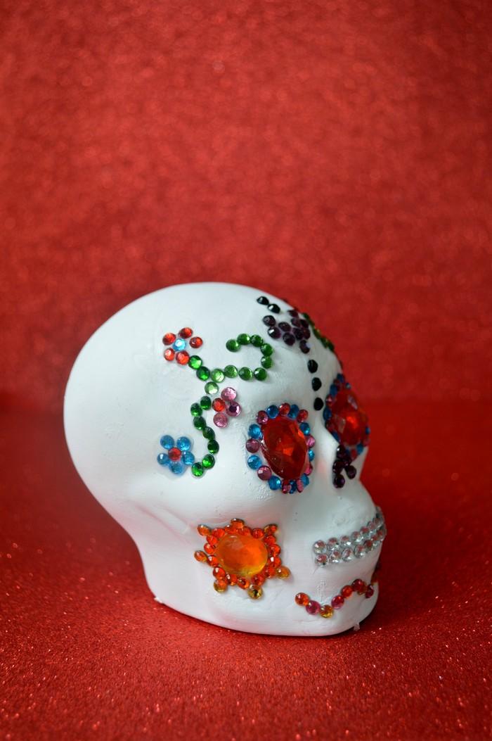 skull-profile