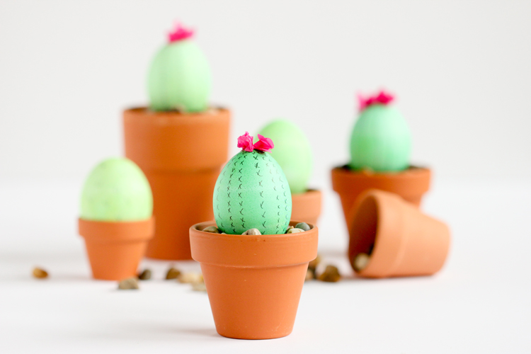 Cactus-Easter-Eggs-19-of-300307
