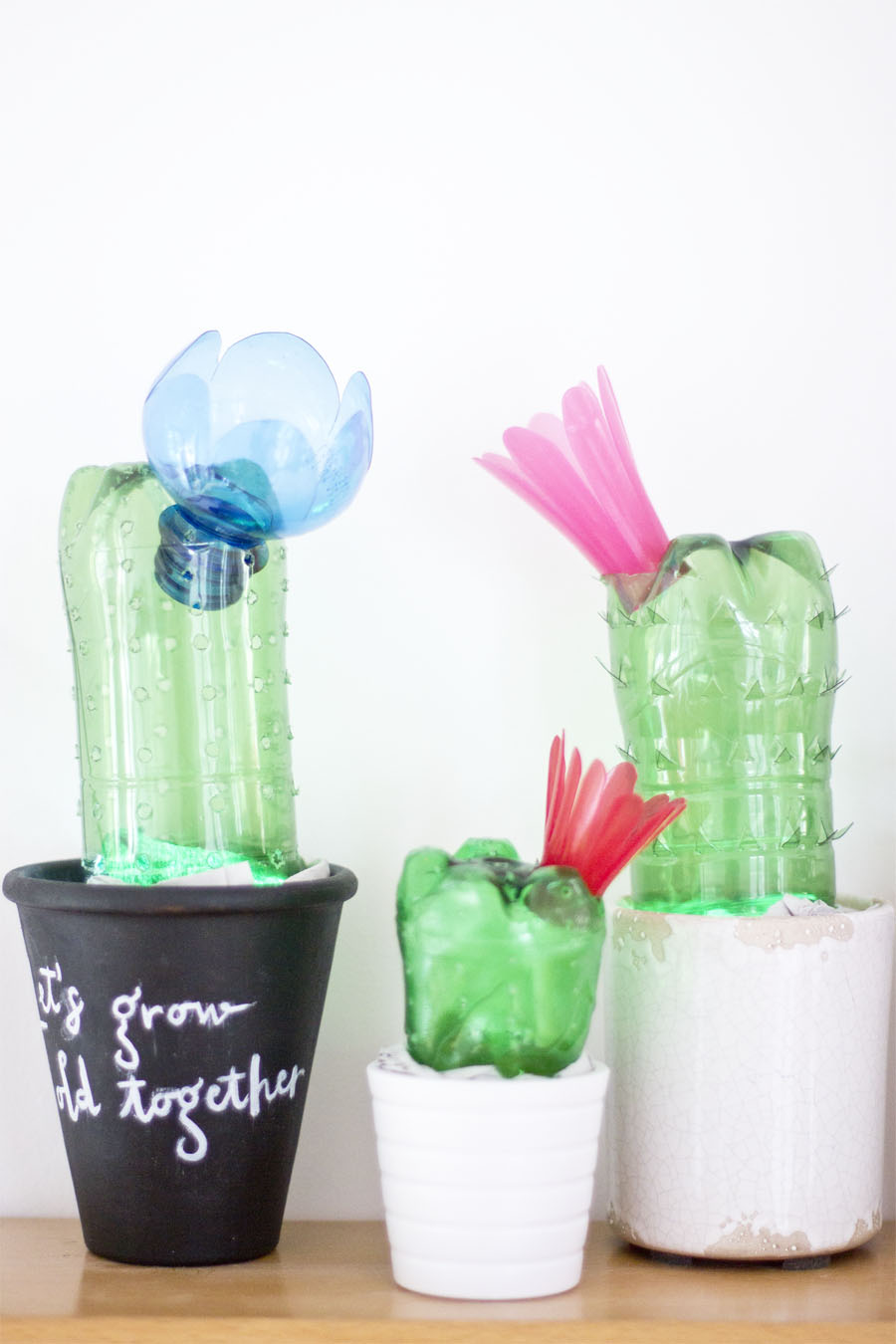 DIY-home-cedoration-upcycled-plastic-bottles-cactus