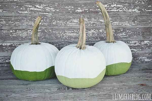 20 PRETTY PAINTED PUMPKINS