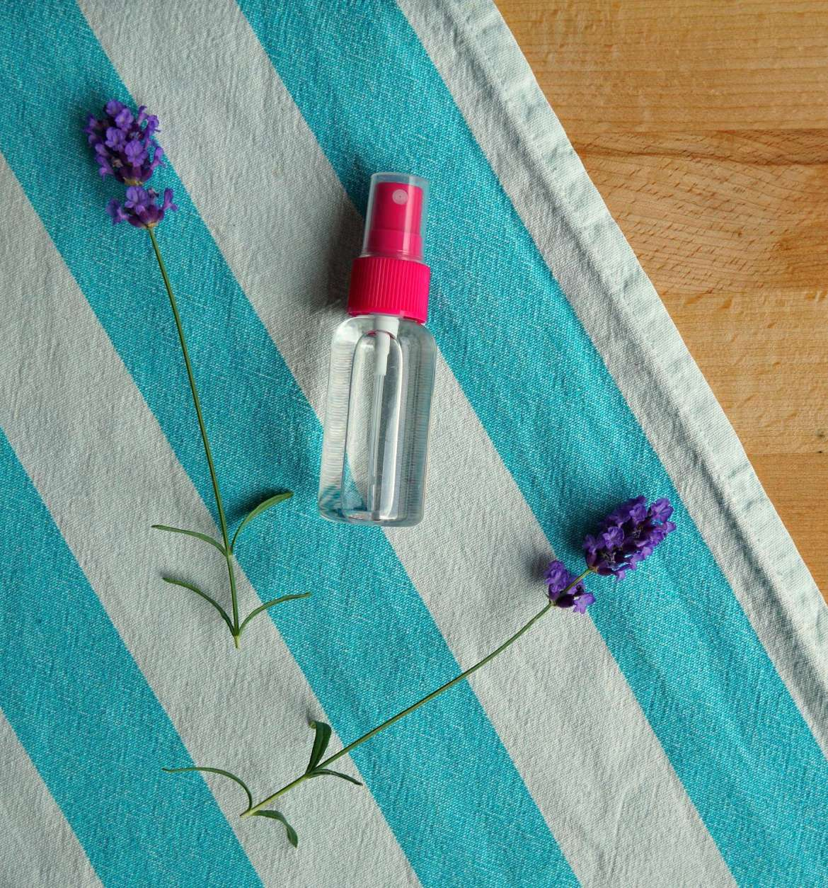 10 WAYS TO KEEP BUGS AWAY THIS SUMMER