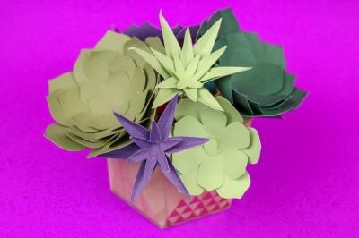Paper succulents cut with Cricut on a purple background