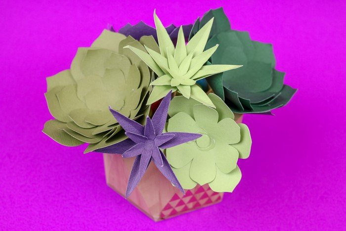 Paper succulents cut with Cricut on a purple background