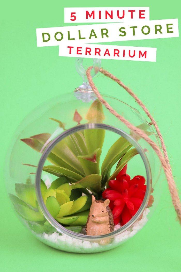 5 Minute Dollar Store Succulent Terrarium Home Decor Videos Mad In Crafts