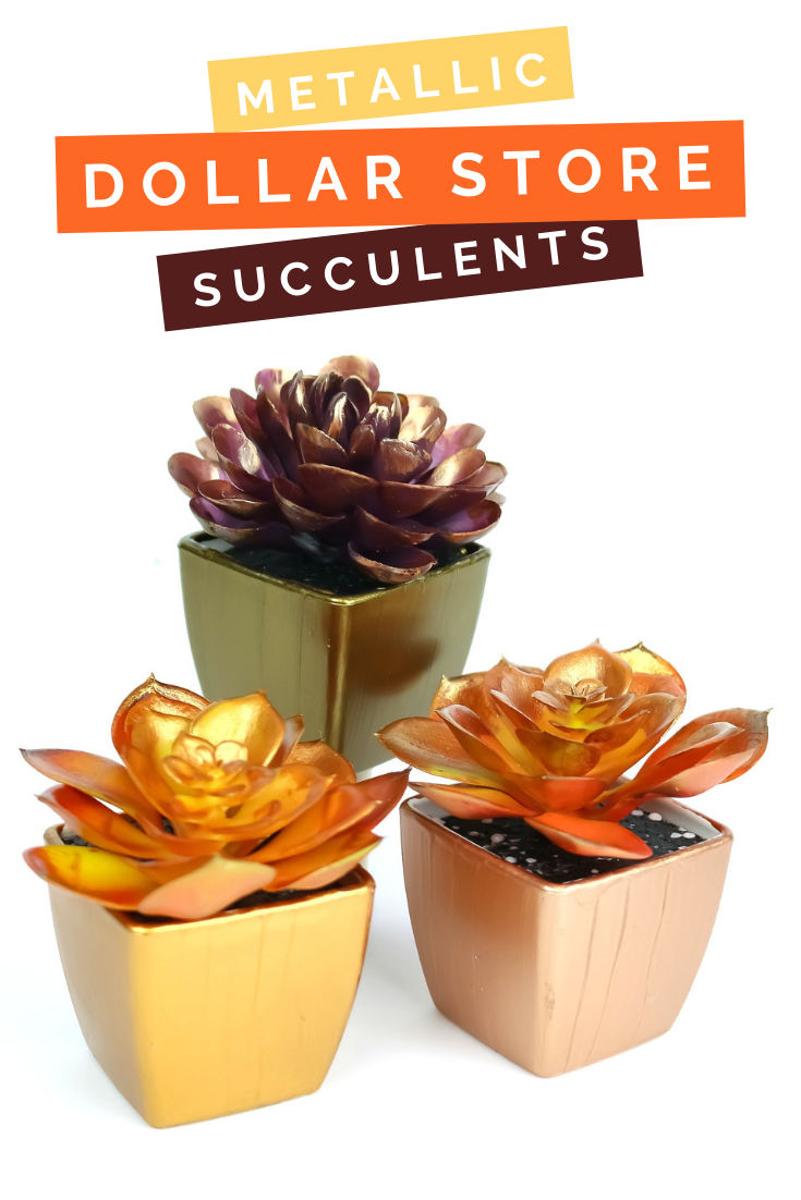 DOLLAR STORE METALLIC SUCCULENTS FOR FALL