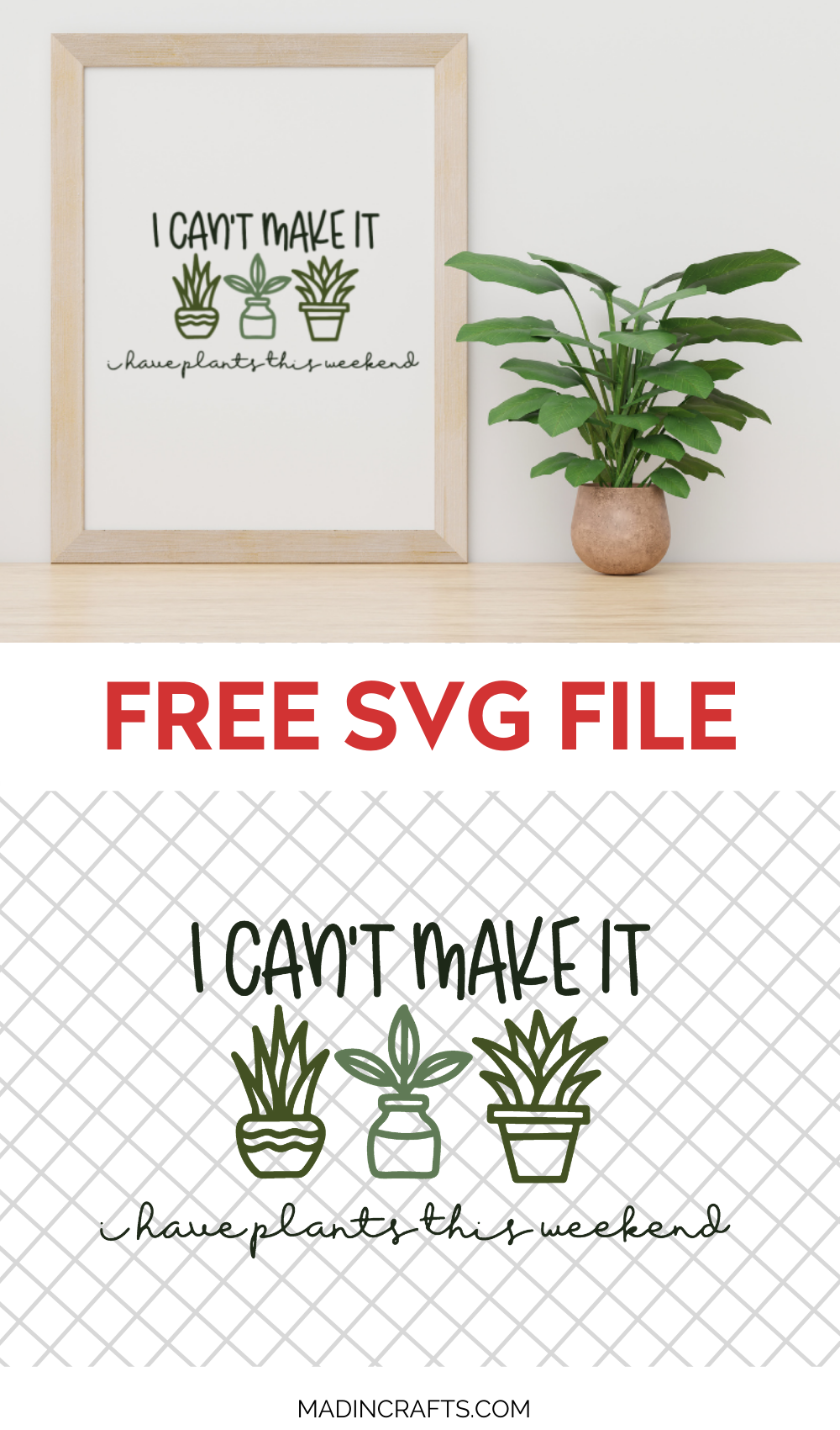 plant svg design in wood frame next to a houseplant
